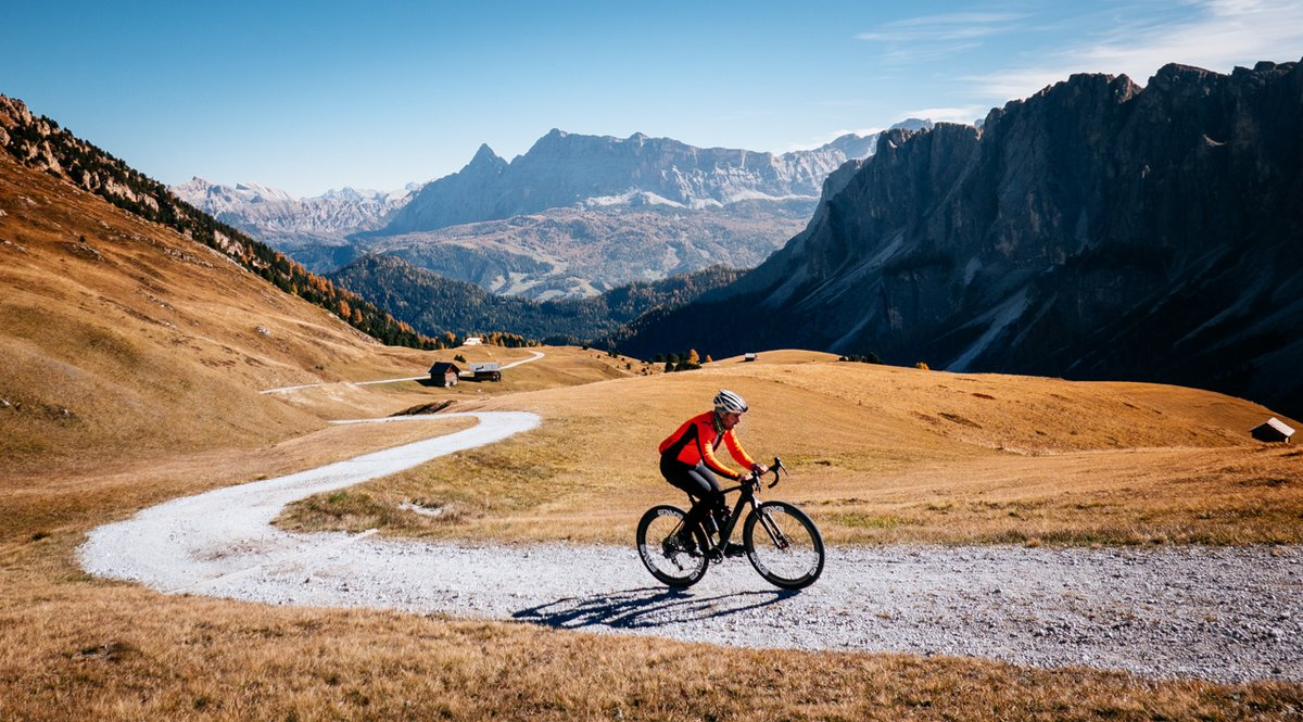 Bici da strada, mountain bike e gravel